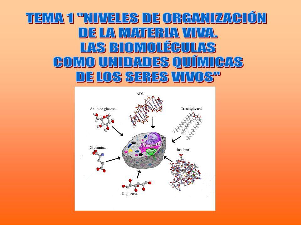 TEMA 1 NIVELES DE ORGANIZACIÓN DE LA MATERIA VIVA. LAS BIOMOLÉCULAS