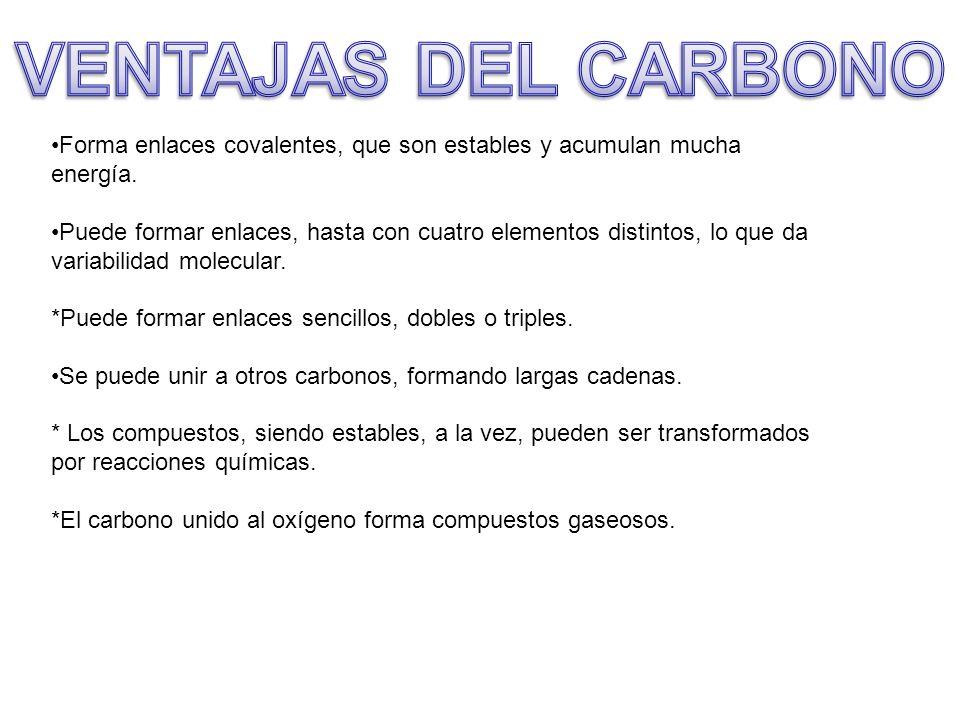 VENTAJAS DEL CARBONO Forma enlaces covalentes, que son estables y acumulan mucha energía.