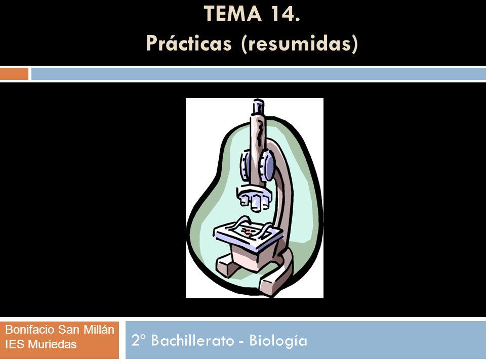 TEMA 14. Prácticas (resumidas)