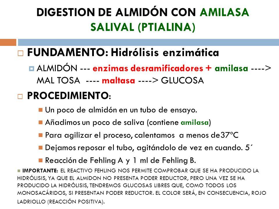 DIGESTION DE ALMIDÓN CON AMILASA SALIVAL (PTIALINA)