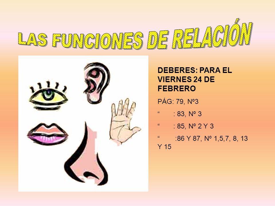 LAS FUNCIONES DE RELACIÓN