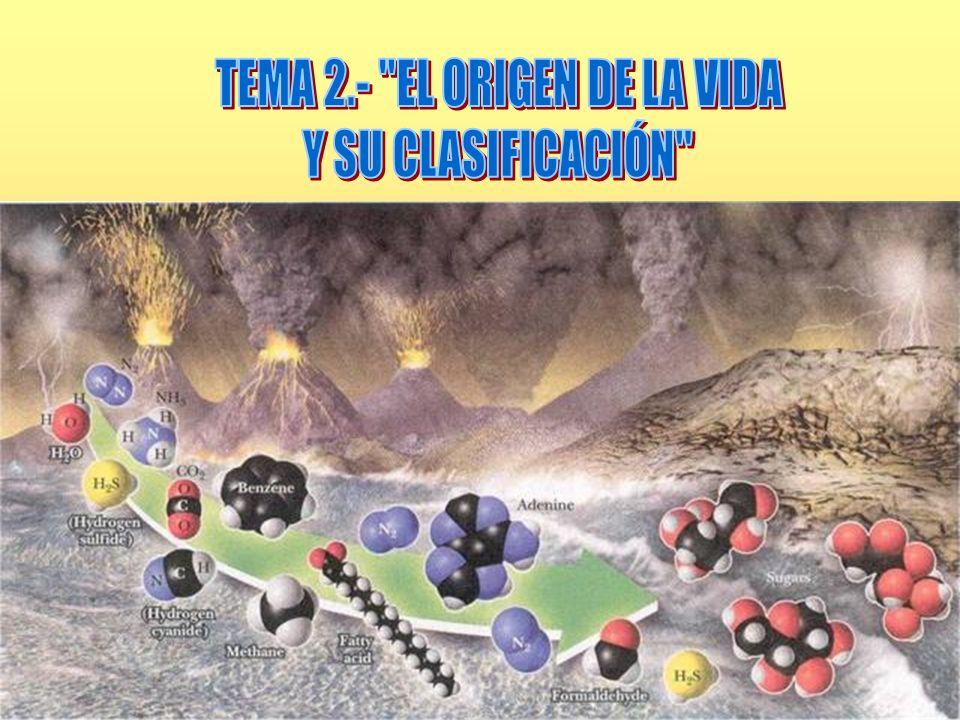 TEMA 2.- EL ORIGEN DE LA VIDA