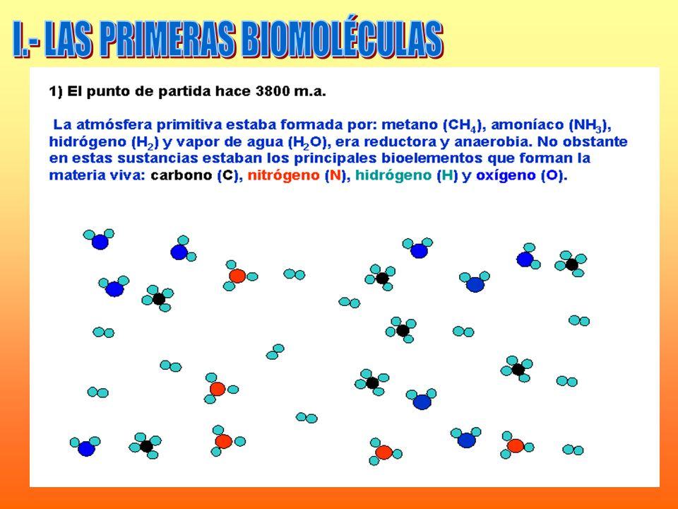 I.- LAS PRIMERAS BIOMOLÉCULAS
