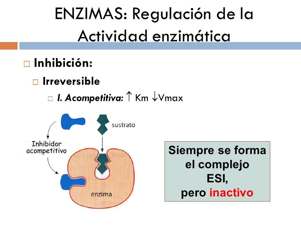 ENZIMAS: Regulación de la Actividad enzimática
