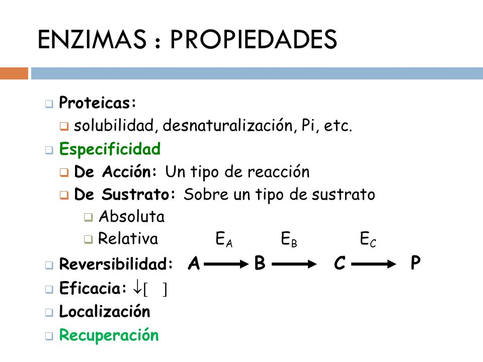 ENZIMAS : PROPIEDADES Proteicas: