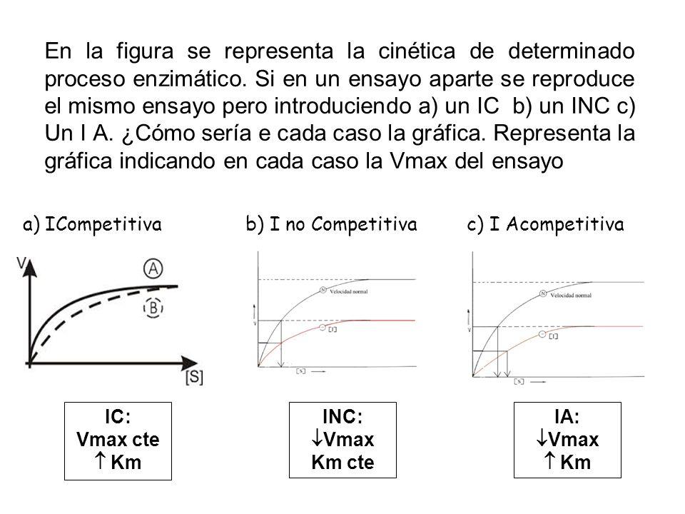 En la figura se representa la cinética de determinado proceso enzimático. Si en un ensayo aparte se reproduce el mismo ensayo pero introduciendo a) un IC b) un INC c) Un I A. ¿Cómo sería e cada caso la gráfica. Representa la gráfica indicando en cada caso la Vmax del ensayo