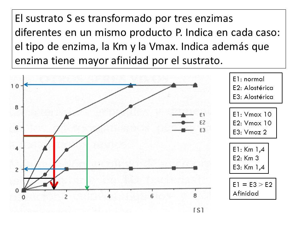 El sustrato S es transformado por tres enzimas diferentes en un mismo producto P. Indica en cada caso: el tipo de enzima, la Km y la Vmax. Indica además que enzima tiene mayor afinidad por el sustrato.