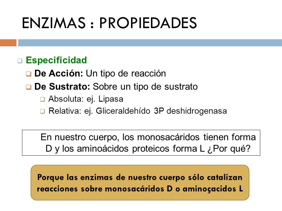 ENZIMAS : PROPIEDADES Especificidad De Acción: Un tipo de reacción