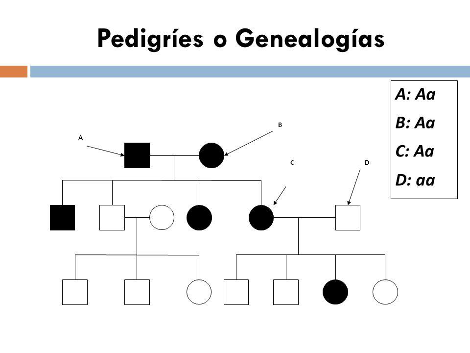 Pedigríes o Genealogías