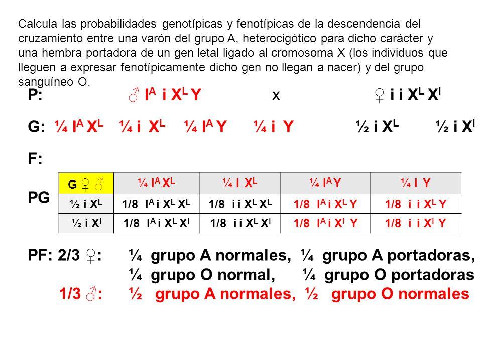 G: ¼ IA XL ¼ i XL ¼ IA Y ¼ i Y ½ i XL ½ i Xl F: PG