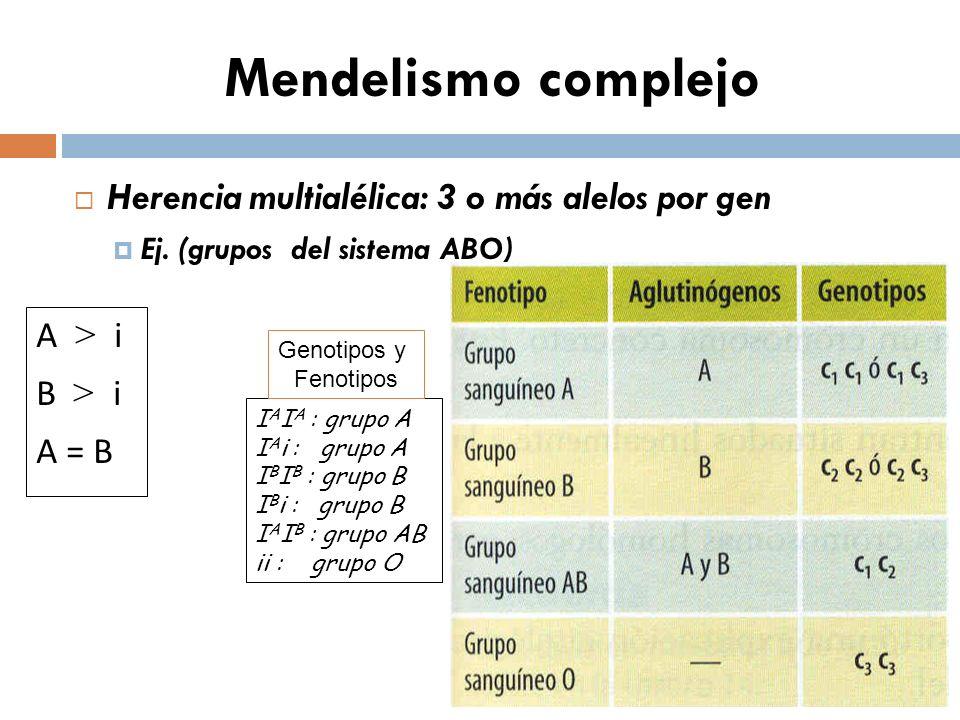 Mendelismo complejo Herencia multialélica: 3 o más alelos por gen