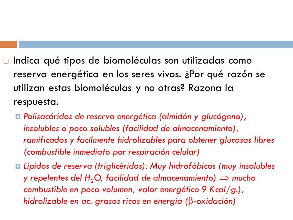 Indica qué tipos de biomoléculas son utilizadas como reserva energética en los seres vivos. ¿Por qué razón se utilizan estas biomoléculas y no otras Razona la respuesta.