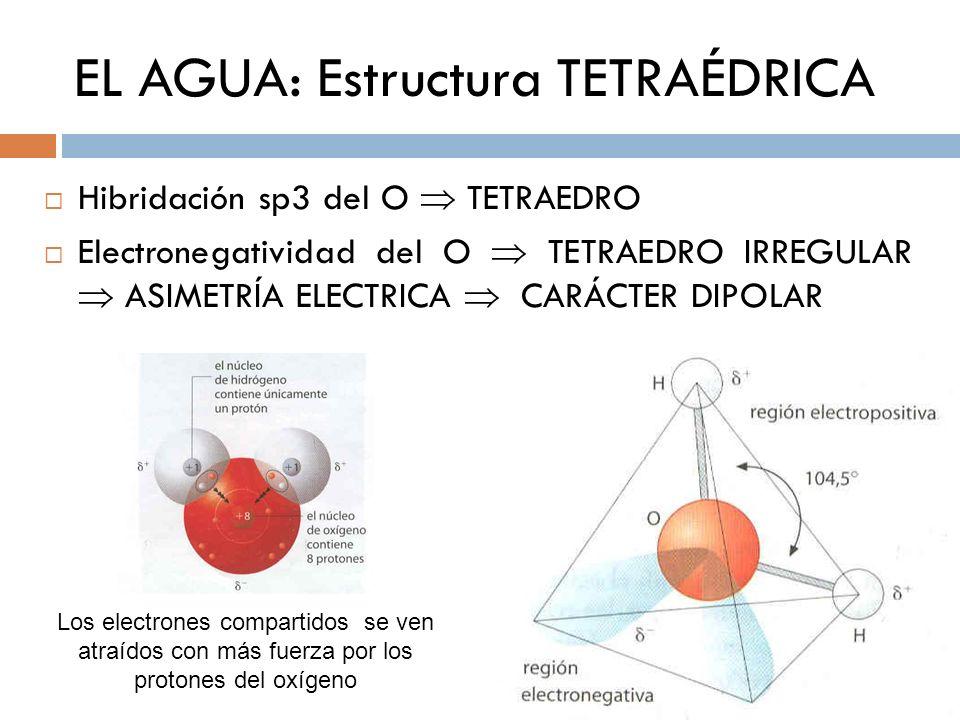 EL AGUA: Estructura TETRAÉDRICA