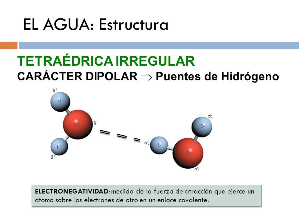 EL AGUA: Estructura TETRAÉDRICA IRREGULAR