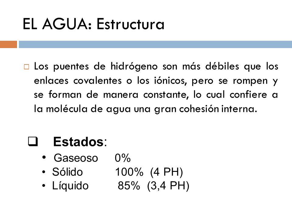 EL AGUA: Estructura Estados: Gaseoso 0%