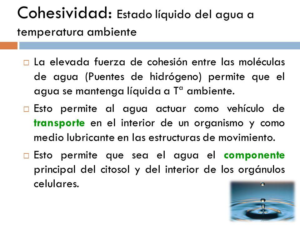 Cohesividad: Estado líquido del agua a temperatura ambiente