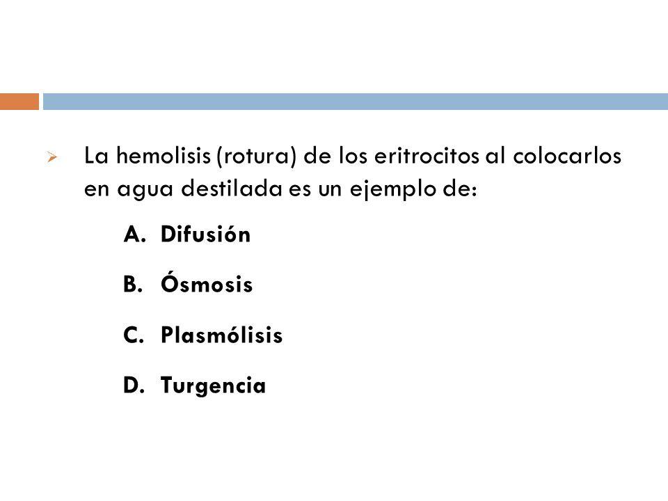 La hemolisis (rotura) de los eritrocitos al colocarlos en agua destilada es un ejemplo de: