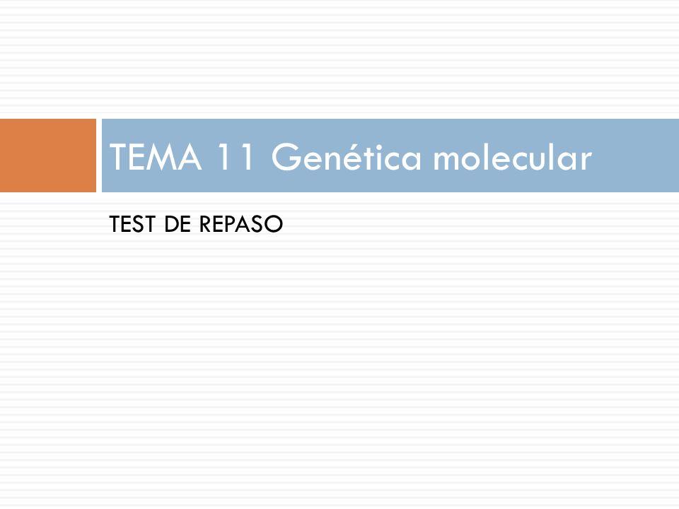 TEMA 11 Genética molecular