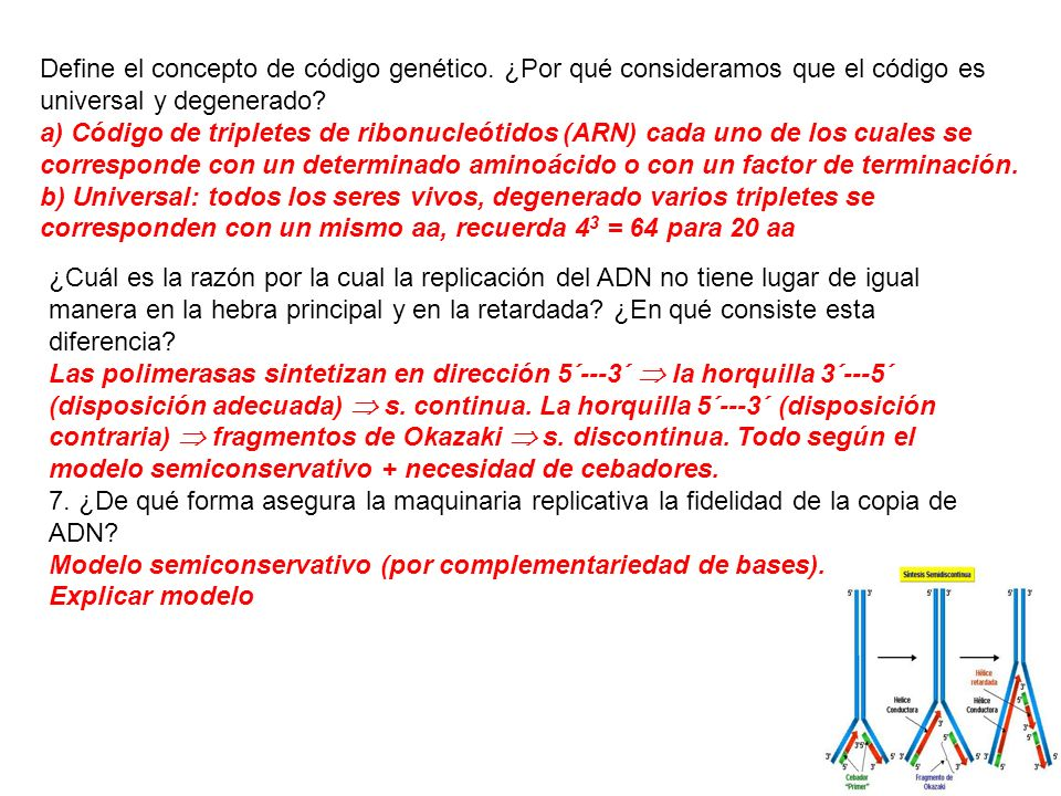 Define el concepto de código genético