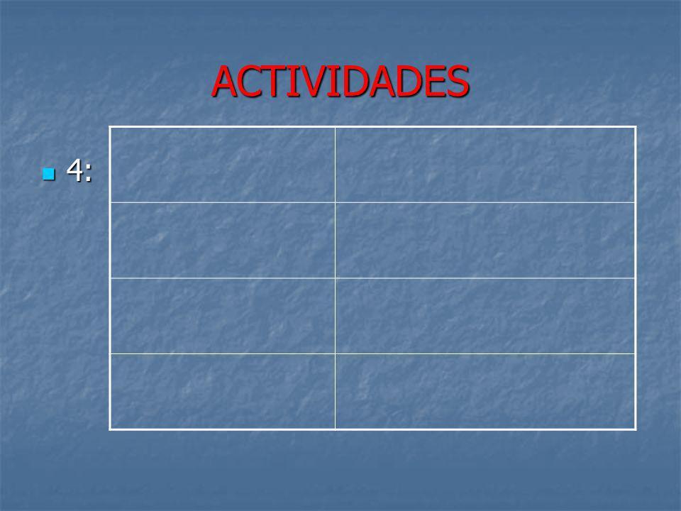 ACTIVIDADES 4: 23