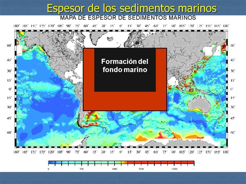 Formación del fondo marino