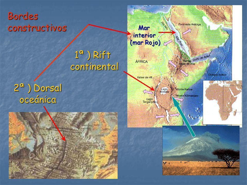 Bordes constructivos 1ª ) Rift continental 2ª ) Dorsal oceánica Mar