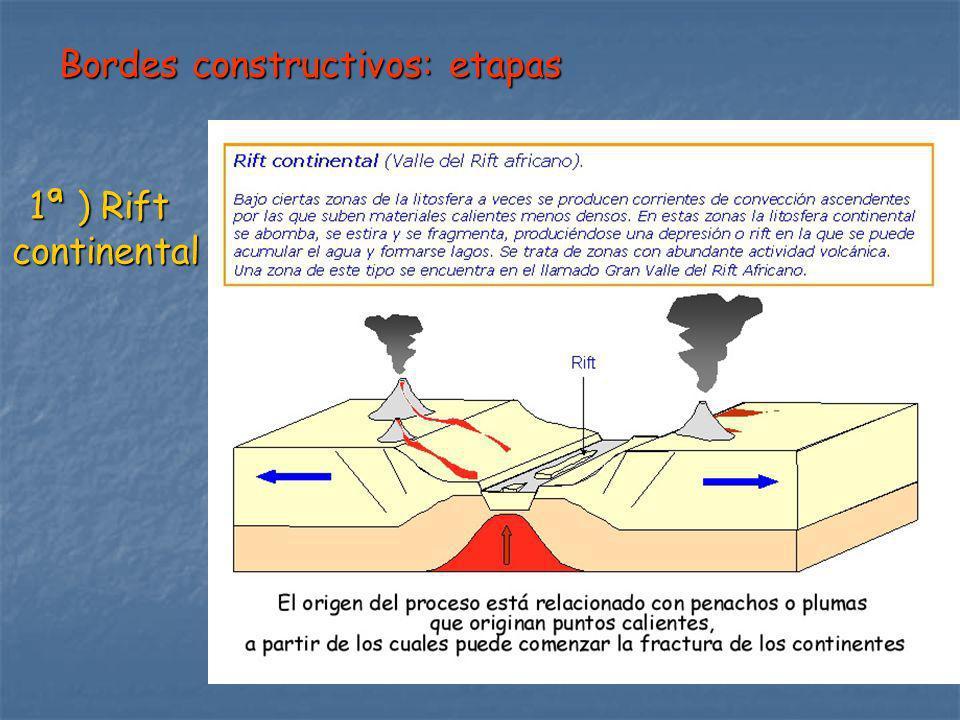 Bordes constructivos: etapas