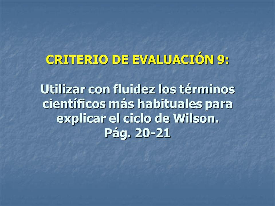 CRITERIO DE EVALUACIÓN 9: Utilizar con fluidez los términos científicos más habituales para explicar el ciclo de Wilson.