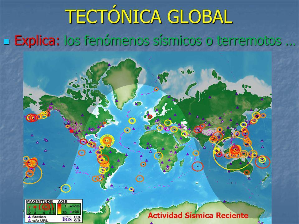 TECTÓNICA GLOBAL Explica: los fenómenos sísmicos o terremotos …