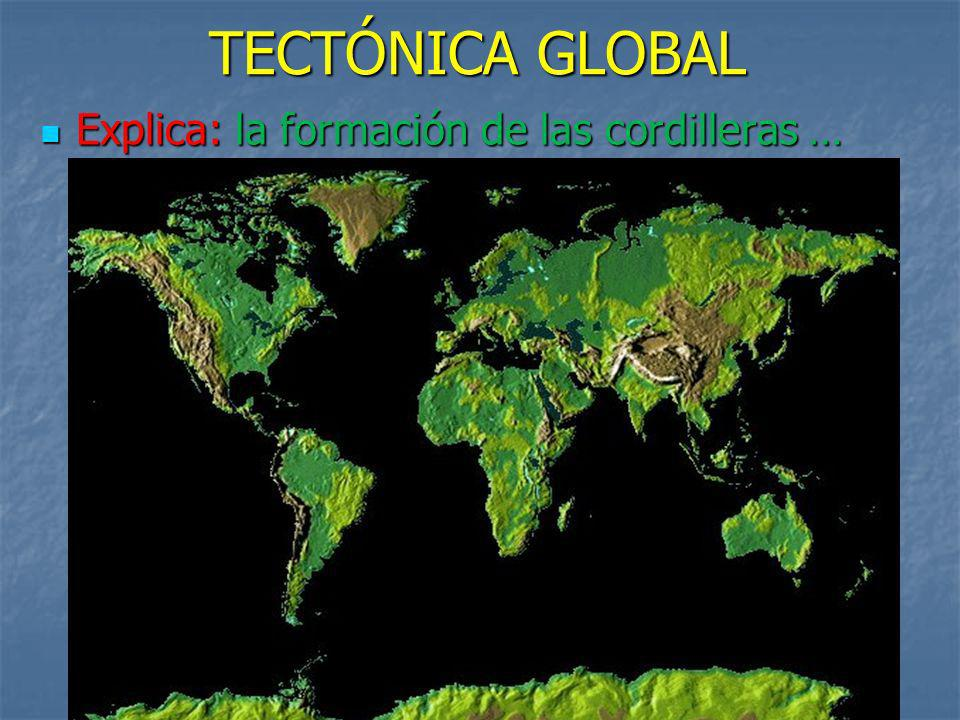 TECTÓNICA GLOBAL Explica: la formación de las cordilleras …