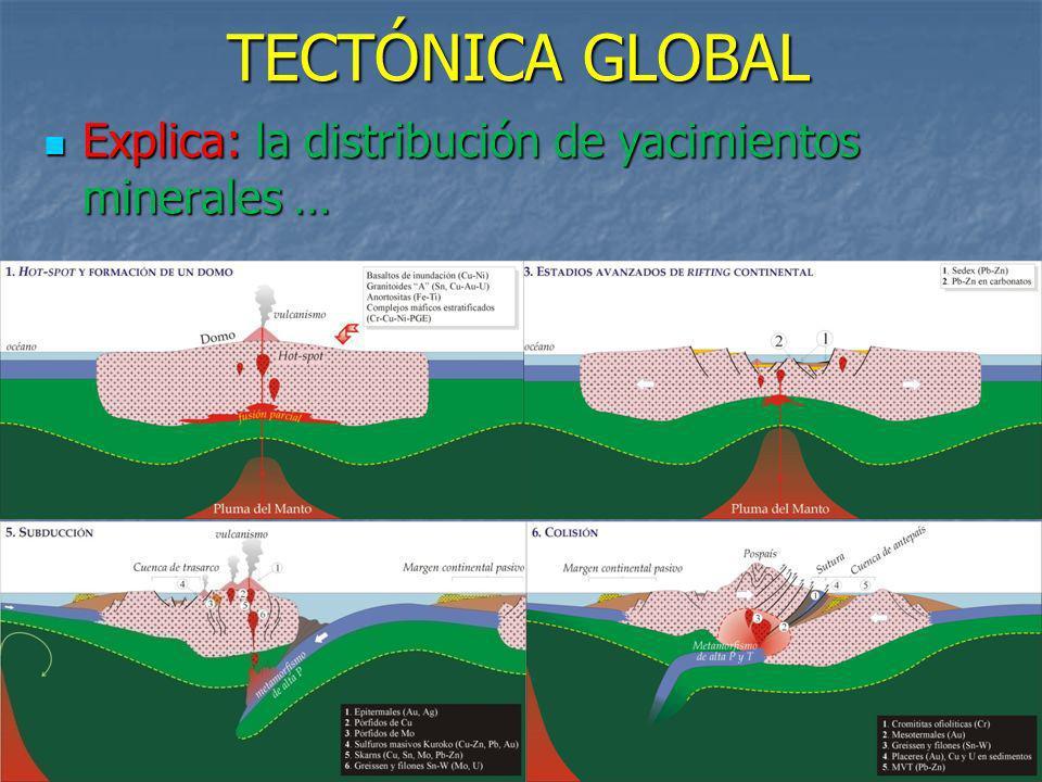 TECTÓNICA GLOBAL Explica: la distribución de yacimientos minerales …