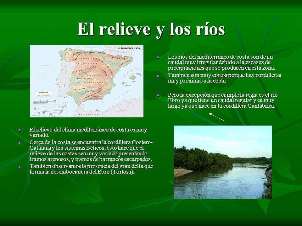 El relieve y los ríos