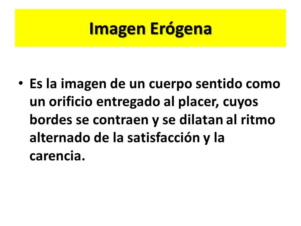 Imagen Erógena