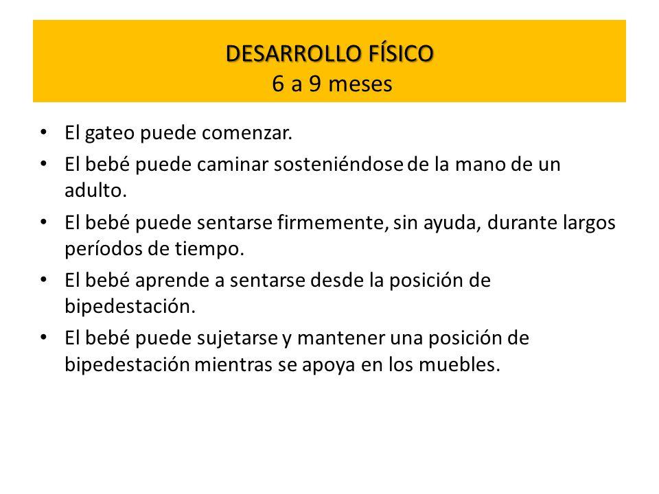 DESARROLLO FÍSICO 6 a 9 meses