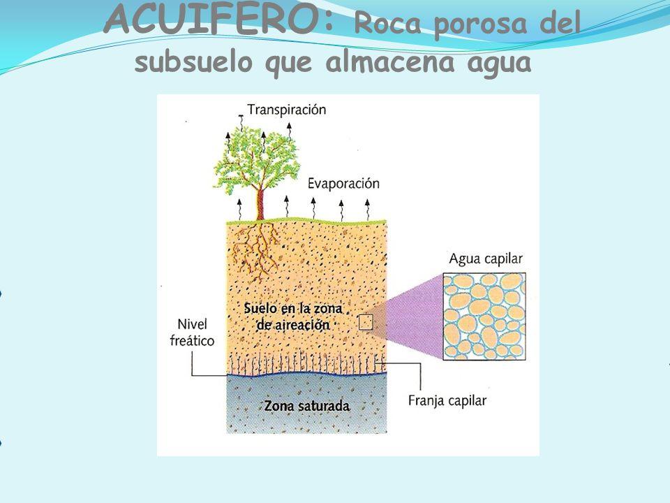 ACUÍFERO: Roca porosa del subsuelo que almacena agua