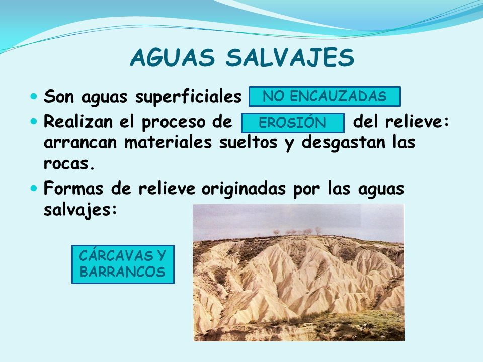 AGUAS SALVAJES Son aguas superficiales