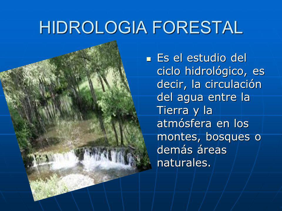 HIDROLOGIA FORESTAL