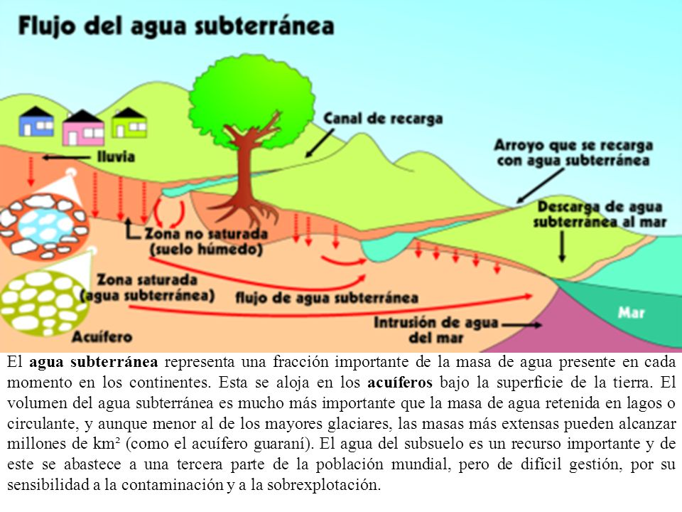 El agua subterránea representa una fracción importante de la masa de agua presente en cada momento en los continentes.
