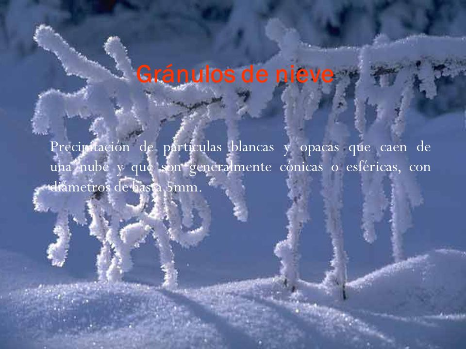 Gránulos de nieve