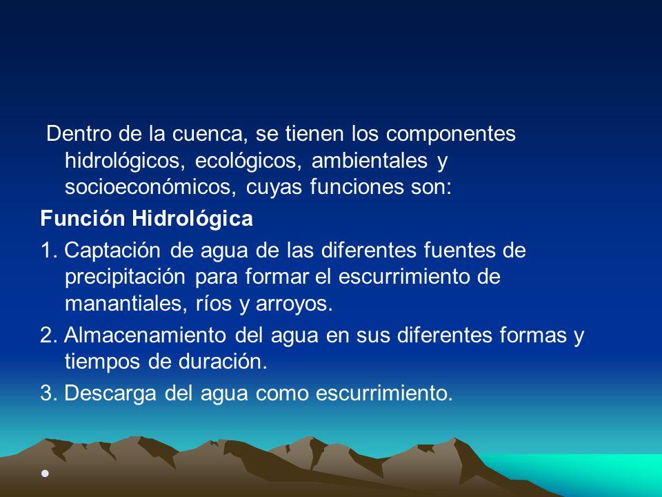 Dentro de la cuenca, se tienen los componentes hidrológicos, ecológicos, ambientales y socioeconómicos, cuyas funciones son: