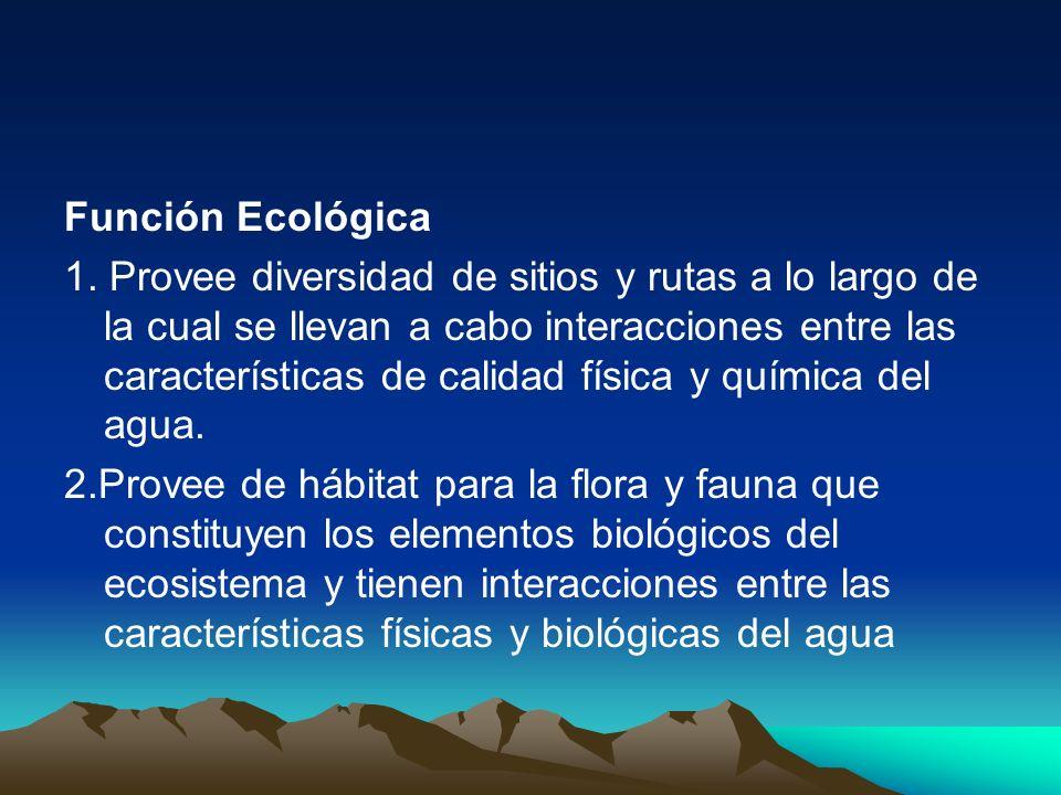 Función Ecológica
