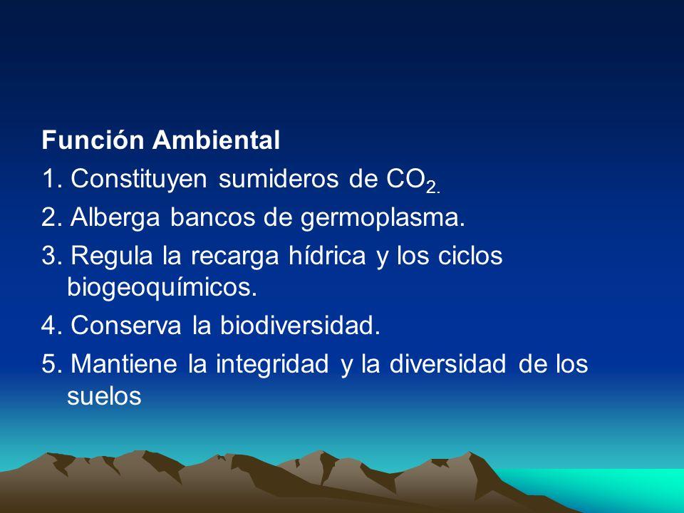 Función Ambiental 1. Constituyen sumideros de CO2. 2. Alberga bancos de germoplasma. 3. Regula la recarga hídrica y los ciclos biogeoquímicos.