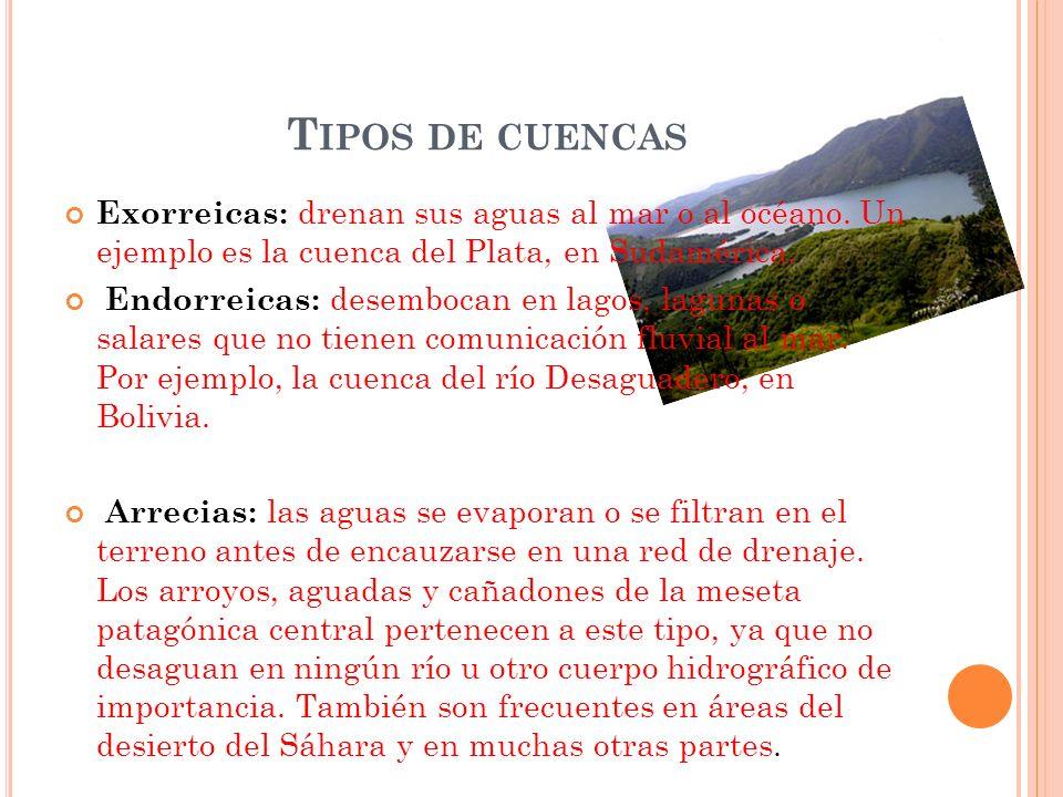 Tipos de cuencas Exorreicas: drenan sus aguas al mar o al océano. Un ejemplo es la cuenca del Plata, en Sudamérica.