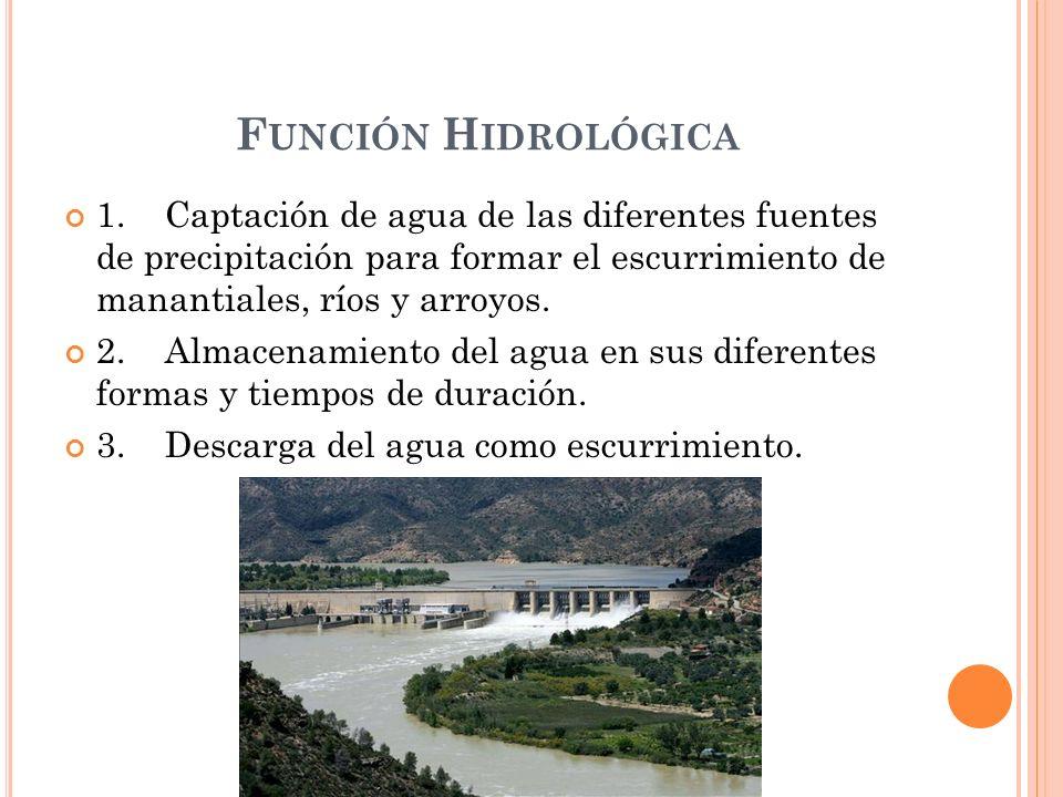 Función Hidrológica 1. Captación de agua de las diferentes fuentes de precipitación para formar el escurrimiento de manantiales, ríos y arroyos.