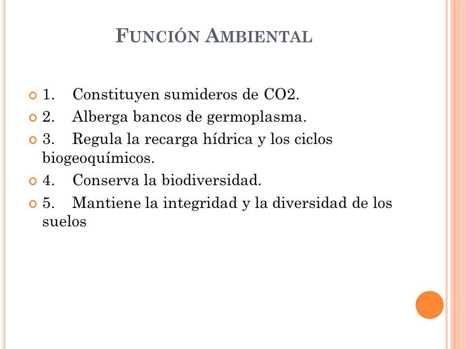 Función Ambiental 1. Constituyen sumideros de CO2.