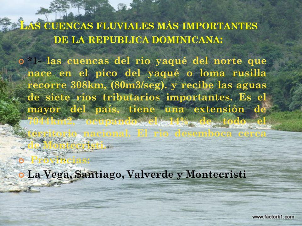 Las cuencas fluviales más importantes de la republica dominicana: