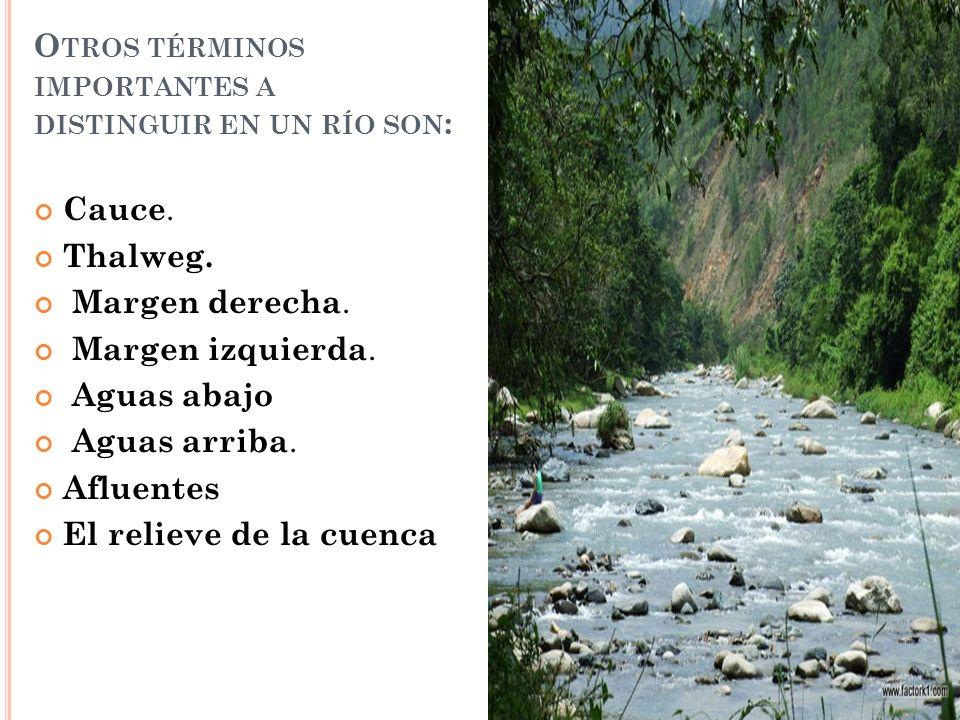 Otros términos importantes a distinguir en un río son: