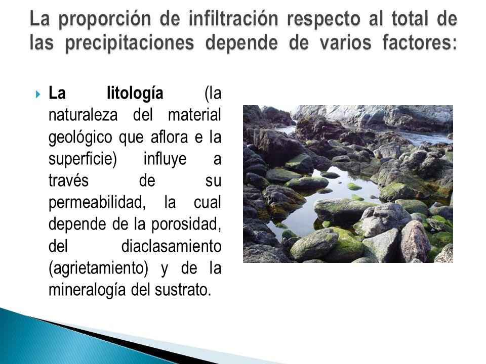 La proporción de infiltración respecto al total de las precipitaciones depende de varios factores: