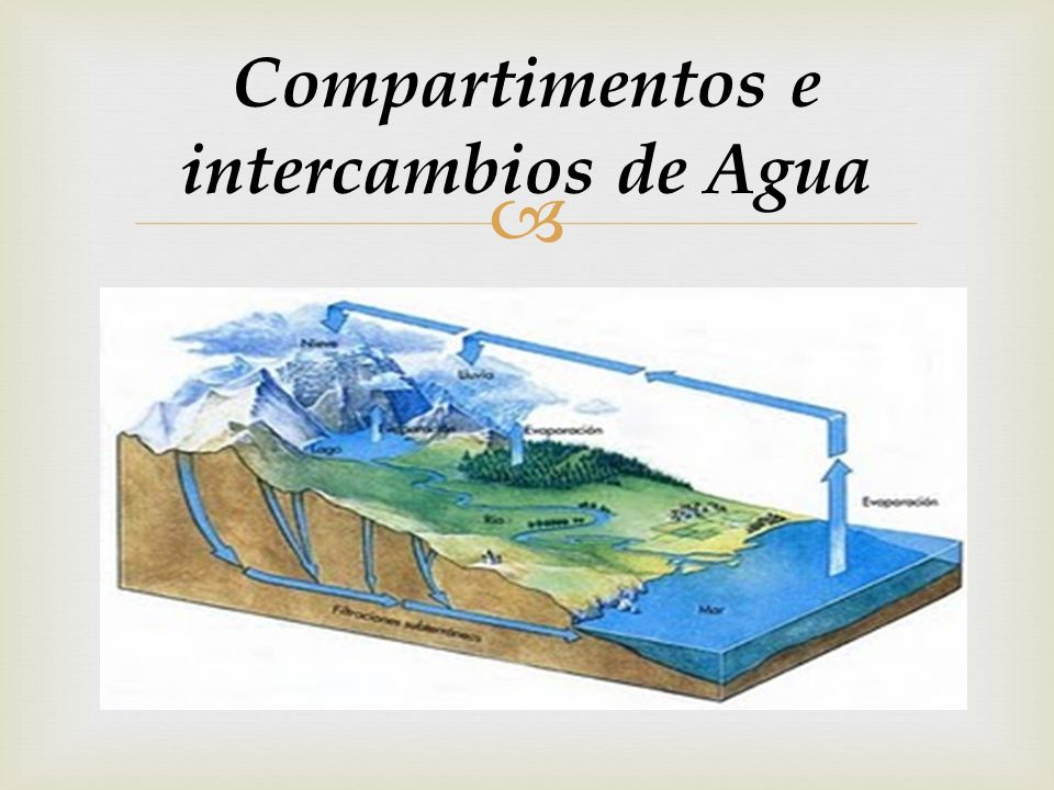 Compartimentos e intercambios de Agua