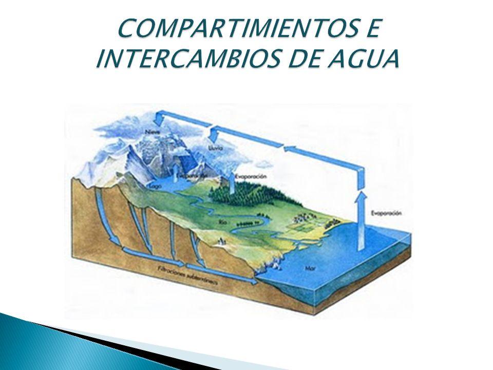 COMPARTIMIENTOS E INTERCAMBIOS DE AGUA